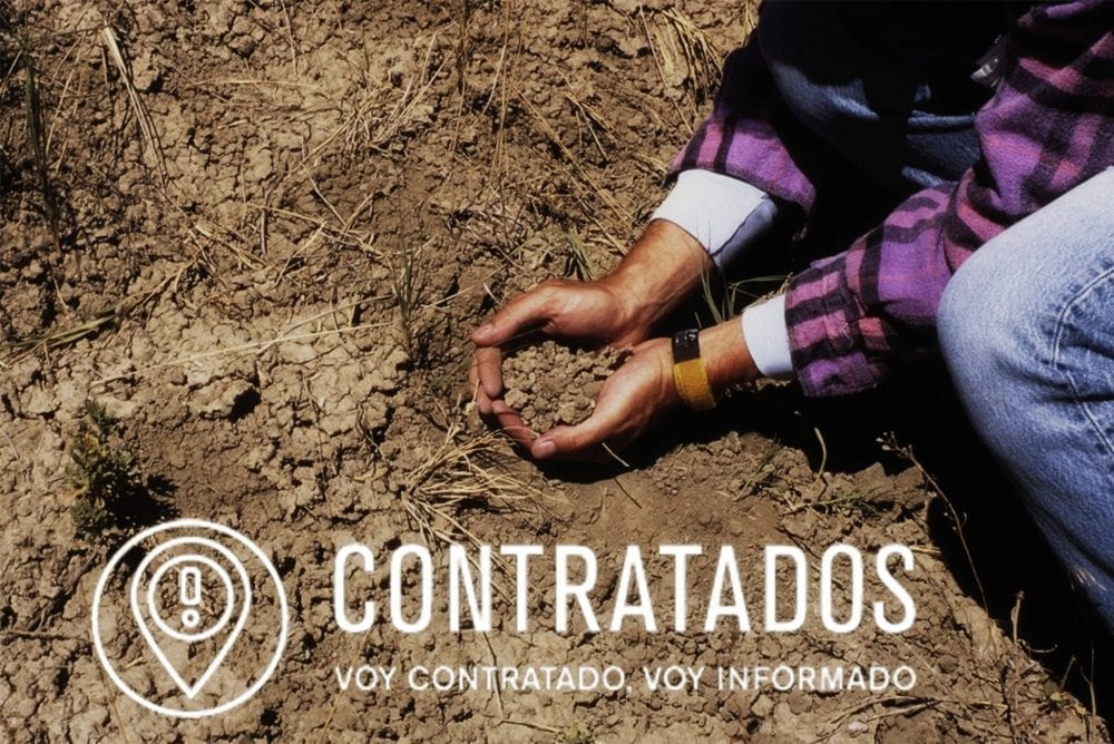 Migrant farm workers, immigrant agriculture work, human trafficking, contratados.
