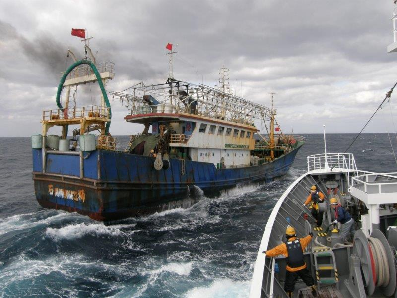The Outlaw Ocean: An Exploration of Policy Solutions to Address Illegal Fishing and Forced Labor in the Seafood Industry